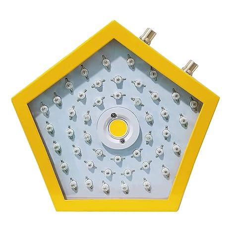 Iluminación para plantas, 1000 W, LED, luz de crecimiento de ...