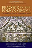 img - for Peacock in the Poison Grove: Two Buddhist Texts on Training the Mind book / textbook / text book