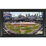 MLB Detroit Tigers Signature Field, Black