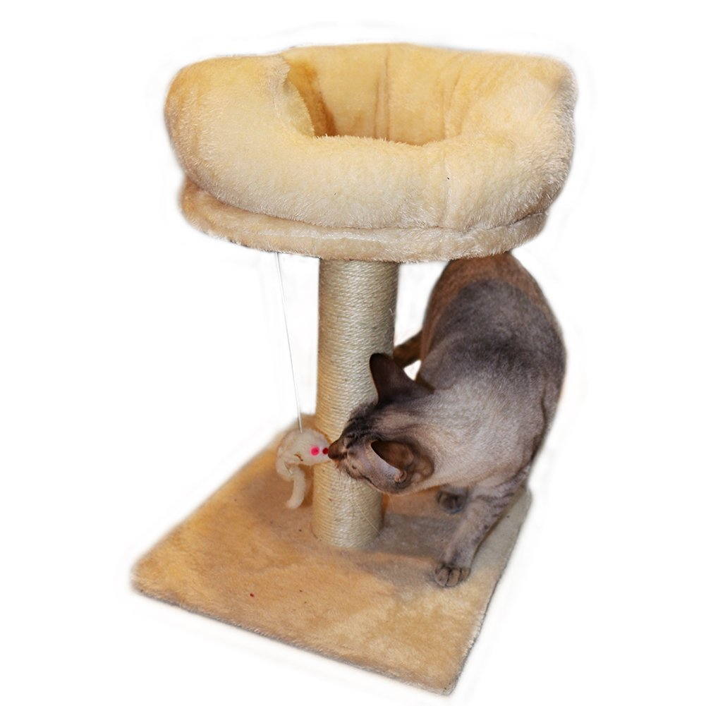Gsisee Cat Scratching Post with Hanging Toy& Plush Base, Cat Bed, Natural Sisal Rope healthy for cats. (Beige)