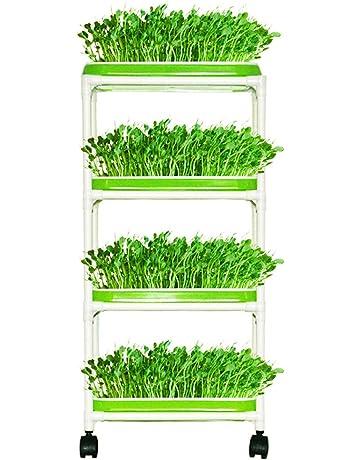 Plant Germination Trays Amazon Com