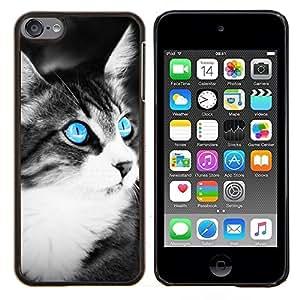 TECHCASE---Cubierta de la caja de protección para la piel dura ** Apple iPod Touch 6 6th Touch6 ** --Azul del ojo de gato