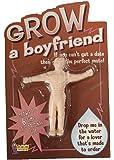 GROW a Boyfriend Novelty Gift by Forum Novelties