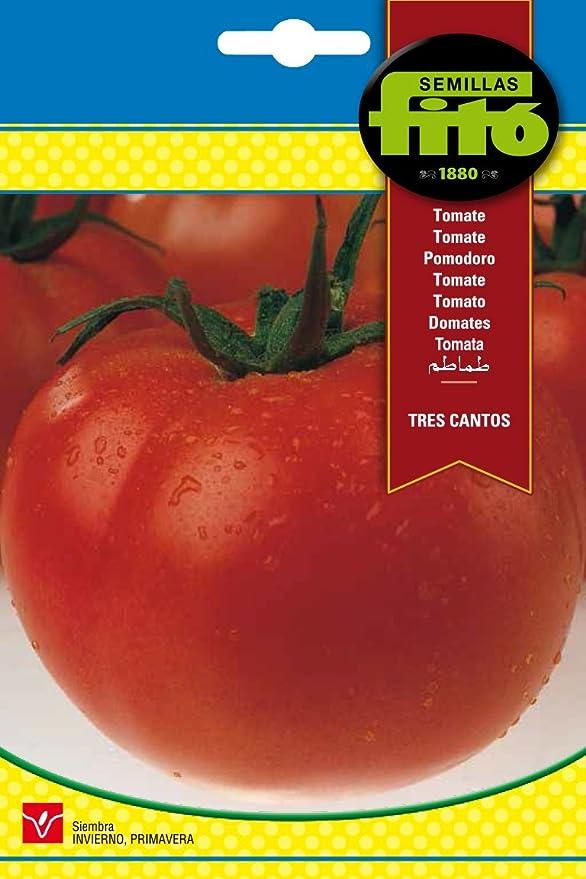 Semillas Fitó 293 - Semillas de Tomate Tres Cantos: Amazon.es: Jardín
