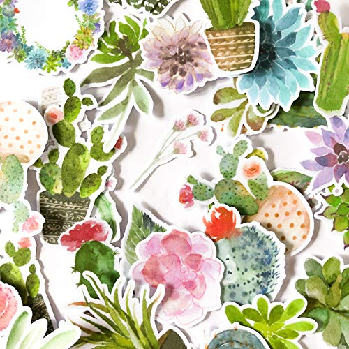 Navy Peony Watercolor Cactus Stickers and Succulent Decals | Cute Aesthetic Stickers for Water Bottles, Phone Cases, and Laptops | Trendy Stickers for Planners, Scrapbooking, and Bullet Journalling ()