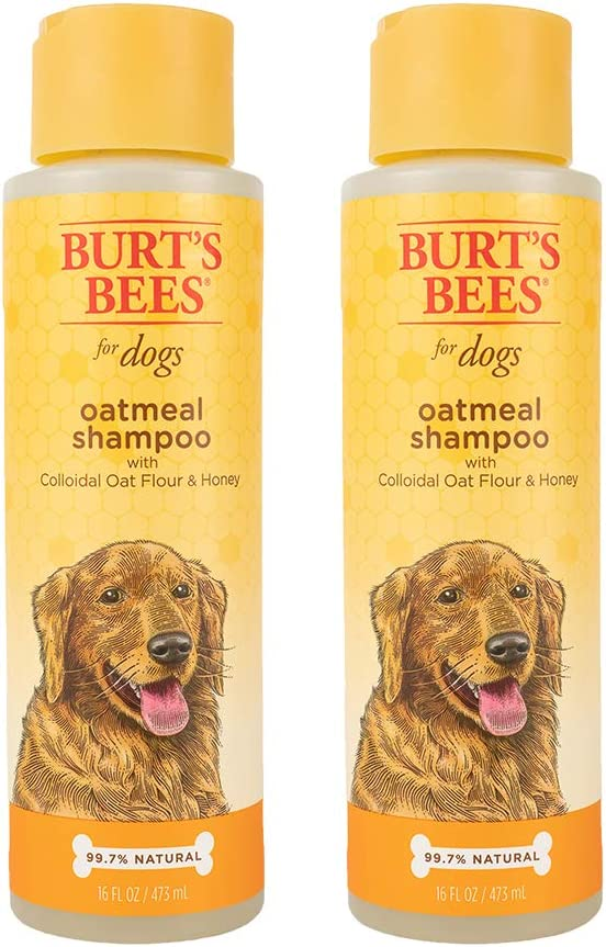 Combo Pack: Burt's Bees for Dogs Oatmeal Dog Shampoo and Conditioner with Colloidal Oat Flour and Honey | Cruelty Free, Sulfate & Paraben Free, pH Balanced for Dogs - Made in The USA