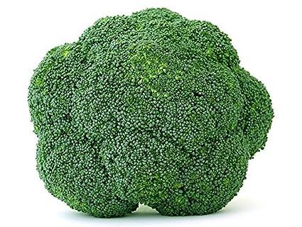 BIO - Brócoli - semillas orgánicas certificadas - semilla