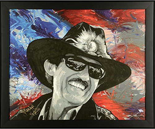 Autographed Limited Edition Lithograph - Richard Petty Framed Autographed 22.8