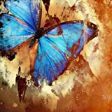 Startonight Canvas Wall Art Butterfly Abstract Turquoise, Butterfly Glow in the Dark, Dual View Surprise Artwork Modern Framed Ready to Hang Wall Art 31.5 X 31.5 Inch 100% Original Art Painting