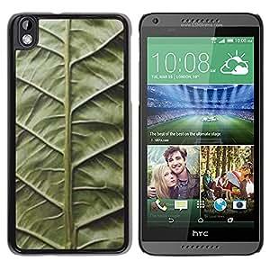 GOODTHINGS Funda Imagen Diseño Carcasa Tapa Trasera Negro Cover Skin Case para HTC DESIRE 816 - hoja verde biología naturaleza viñeta