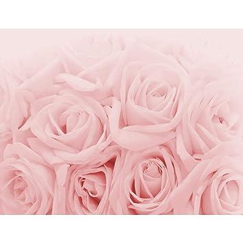 Fototapete Blumen Rosen Rosa Vlies Wand Tapete Wohnzimmer Schlafzimmer Büro  Flur Dekoration Wandbilder XXL Moderne Wanddeko