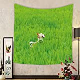 Gzhihine Custom tapestry Nature Tapestry Playful Chihuahua Puppy Dog in the Grass Cute Animal Pet Best Friend Picture for Bedroom Living Room Dorm 60WX40L Fern Green Cream
