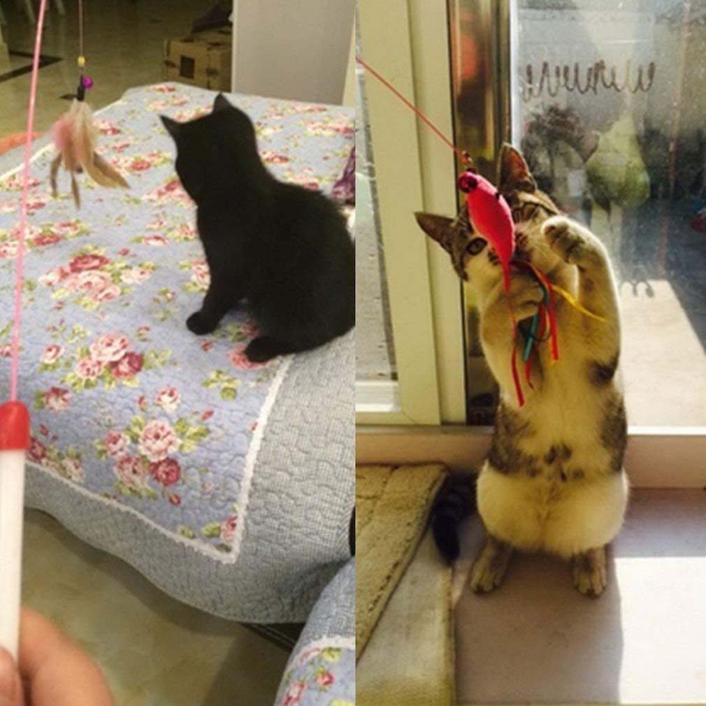 Yogasada Kitten Cat Pet Toy Wire Chaser Wand Teaser Pluma con Cuentas de Bell Juega Divertido