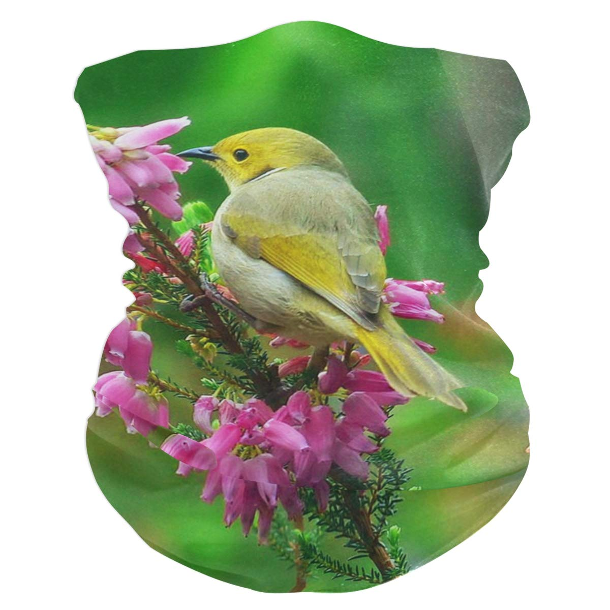Bird Bud Balaclava Headband...