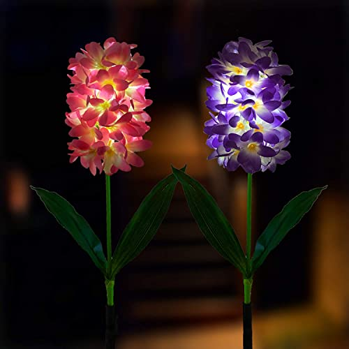 Outdoor Solar Powered Hyacinth Lights Flower Stake hyacinthus orientalis, for Garden Patio Yard Christmas Pathway Decoration,2 Pack Purple Pink
