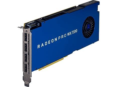 HP - Tarjeta gráfica (Radeon Pro WX 7100, 8 GB, GDDR5, 256 ...