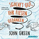 Schlaft gut, ihr fiesen Gedanken Audiobook by John Green Narrated by Birte Schnöink