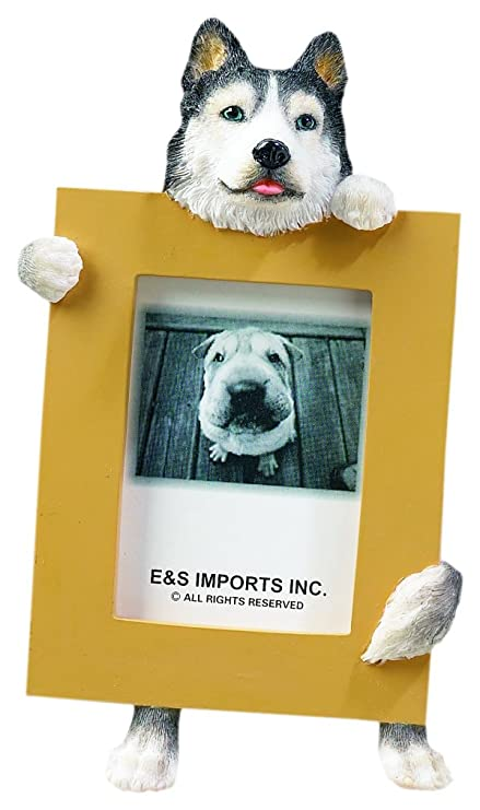 Amazon Com Siberian Husky Dog 2 5 X 3 5 Photo Frame Pet Supplies