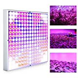 2016 New Vision LED Plant Grow Light,Highest Efficient Hydroponic LED Grow Lights (45W),For Hydroponic Garden Greenhouse and Indoor plant For Sale