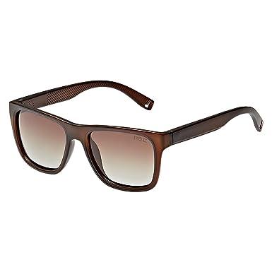 51ce12ce7 MEC Wayfarer Unisex Sunglasses - L 816 S 005-55-18-145mm: Amazon.ae