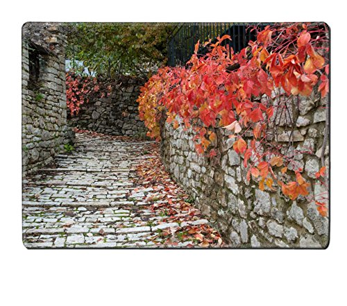 luxlady-natural-rubber-placemat-image-id-25994490-road-with-red-leaves-in-a-traditional-village-epir