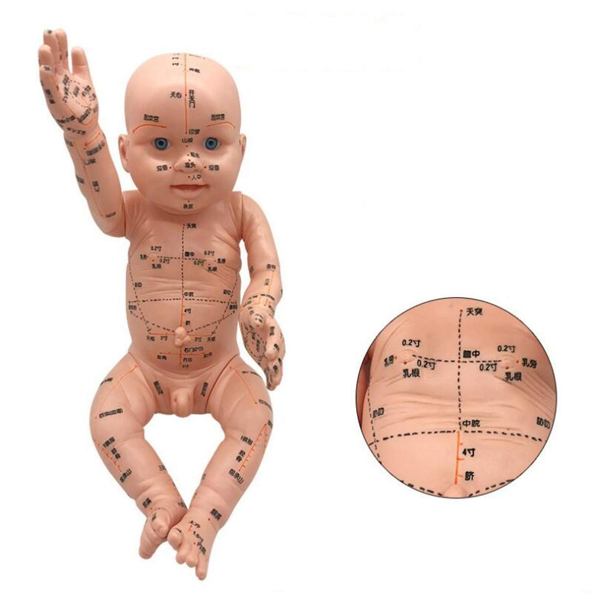 WellieSTR 52cm Mannequin Baby, Acupoint and Trigger Point Therapy Mold for Babies,Baby Reflex Zone Model Acupuncture Model, Chinese Language TCM Reflexology,Domestic Nursing Yuesao Training