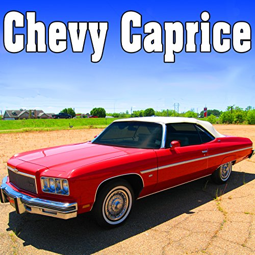 Chevy Caprice, Internal Perspective: Windshield Wipers Starts, Runs Fast & Stops