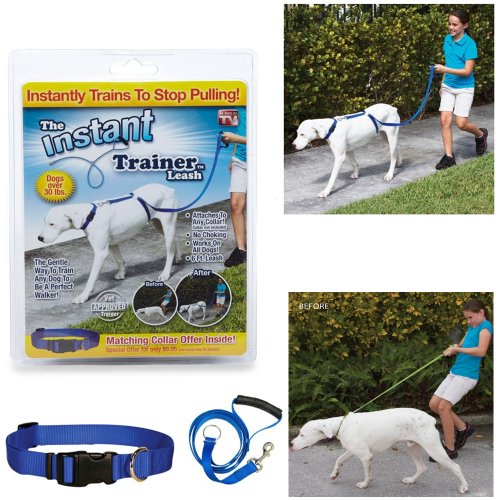 Instant Trainer Leash Dogs Over