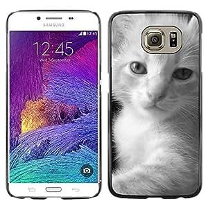 Be Good Phone Accessory // Dura Cáscara cubierta Protectora Caso Carcasa Funda de Protección para Samsung Galaxy S6 SM-G920 // Kitten Fluffy Black White Javanese
