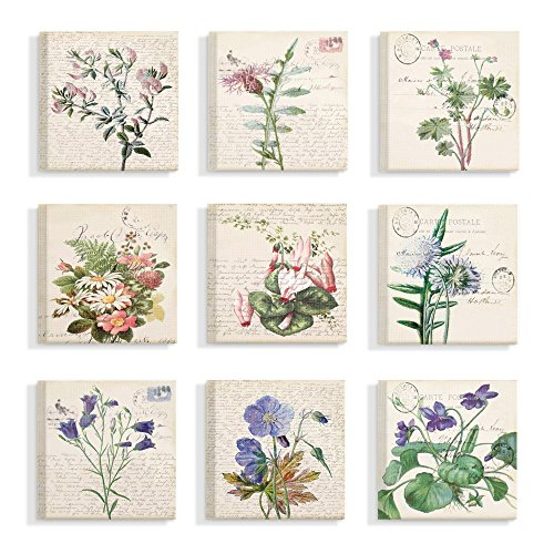 The Stupell Home Decor Collection Vintage Postcard Script Flower Illustrations Stretched Canvas Wall Art, Multicolor made in Rhode Island