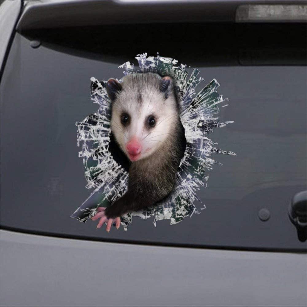 DONL9BAUER Opossum Pet Car Stickers Vinyl Auto Scratch Cover 3D Sticker Car Decal for Laptop Travel Case Tumbler Door Window Bumper Luggage Idea