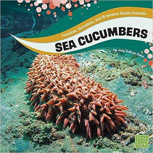 Descargar Bit Torrent Sea Cucumbers Como PDF
