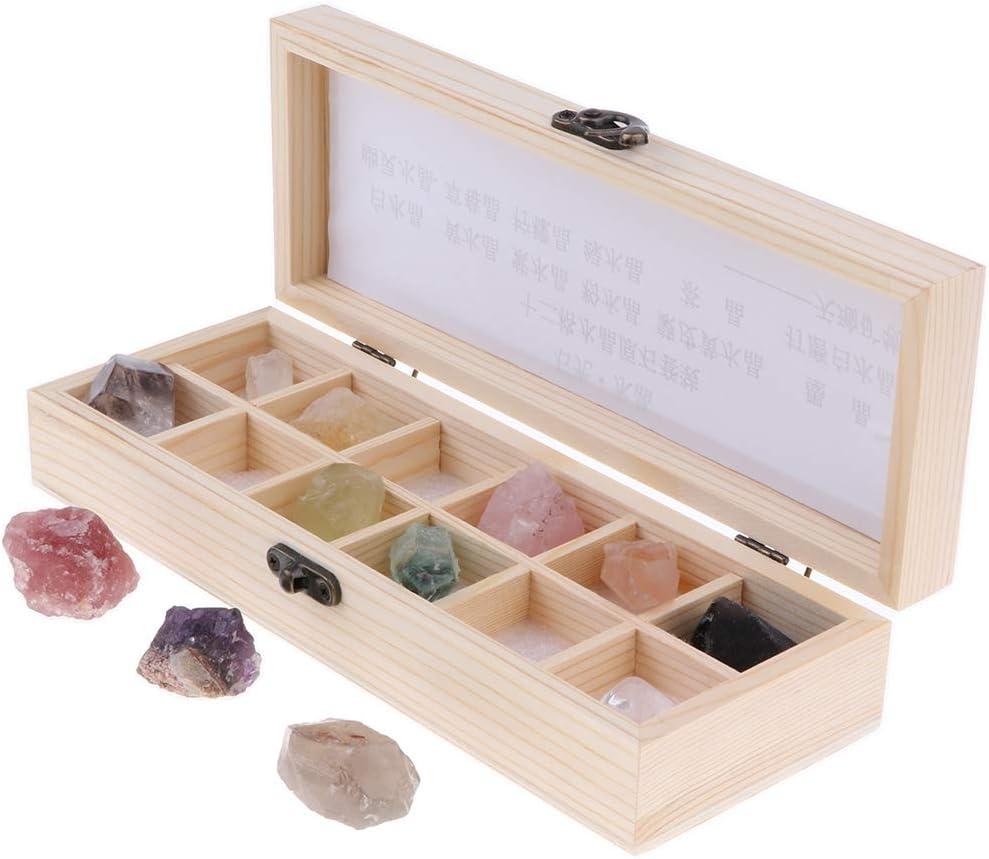 perfeclan 12x Muestra de Piedras Preciosas Minerales de Mundo con Caja de Almacenamiento para Colecciones Estudio Geológico