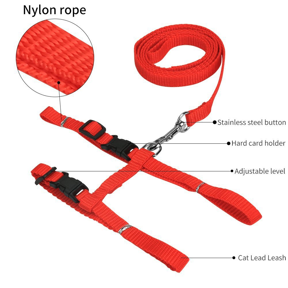 PETCARE Adjustable Pet Cat Harness Leash Set Nylon Strap Collar with Leads Kitten Fluorescent Halter Belt Strips for Walking Cats 5 Colors