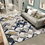 ZGP Interior carpet Rectangular rug living room bedroom coffee table Europe and the United States carpet blanket (Color : D, Size : 160230cm)