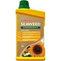 Amgrow 60222 Seaweed Liquid Concentrate