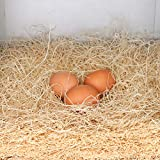 Rural365 Chicken Nest Box Liners 12 Pack