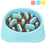 Noyal Dog Slow Feeder Bowl, Non Slip Puzzle Bowl - Anti-Gulping Pet Slower Food Feeding Dishes - Interactive Bloat Stop Dog Bowls - Durable Preventing Choking Healthy Design Dogs Cats Bowl