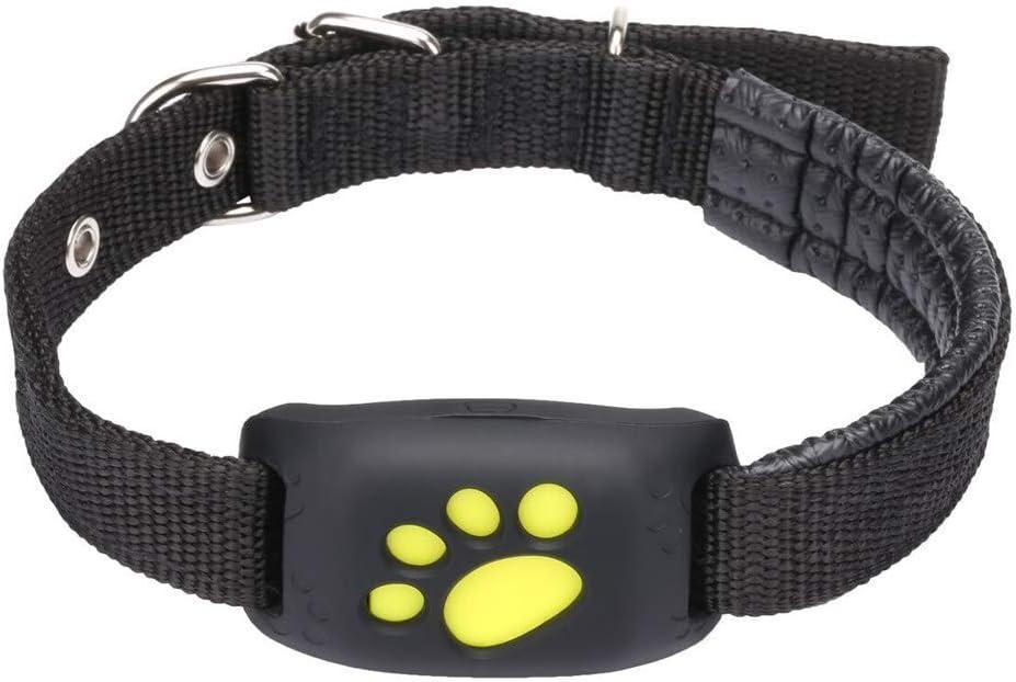DjfLight Collar GPS Perros y Gato, Rastreador para Mascotas Localizador, Localizador Inteligente de Mascotas contra caídas, localizador Micro rastreador inalámbrico, Evita Que Las se pierdan,Black