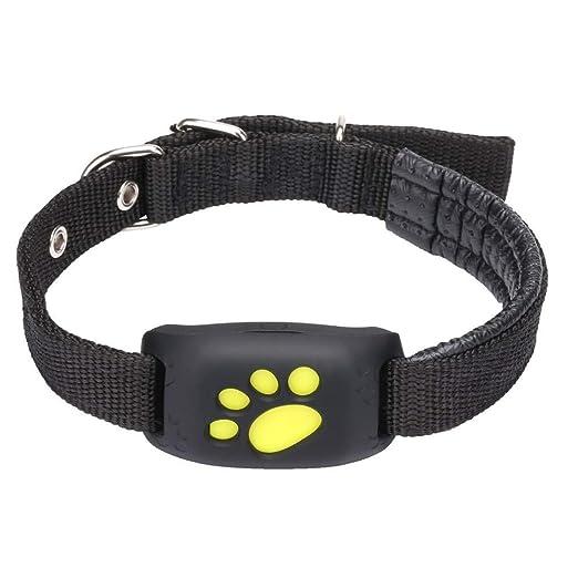 DjfLight Collar GPS Perros y Gato, Rastreador para Mascotas ...