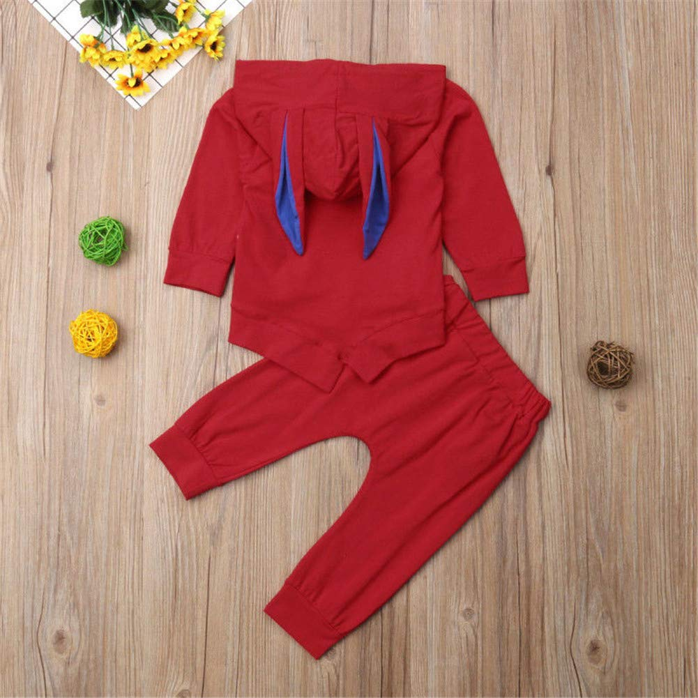2Pcs//Set Newborn Kids Baby Girl 3D Ear Long Sleeve Tops Sweatshirt+Long Pants Outfits Clothes Sets 6M-4Y