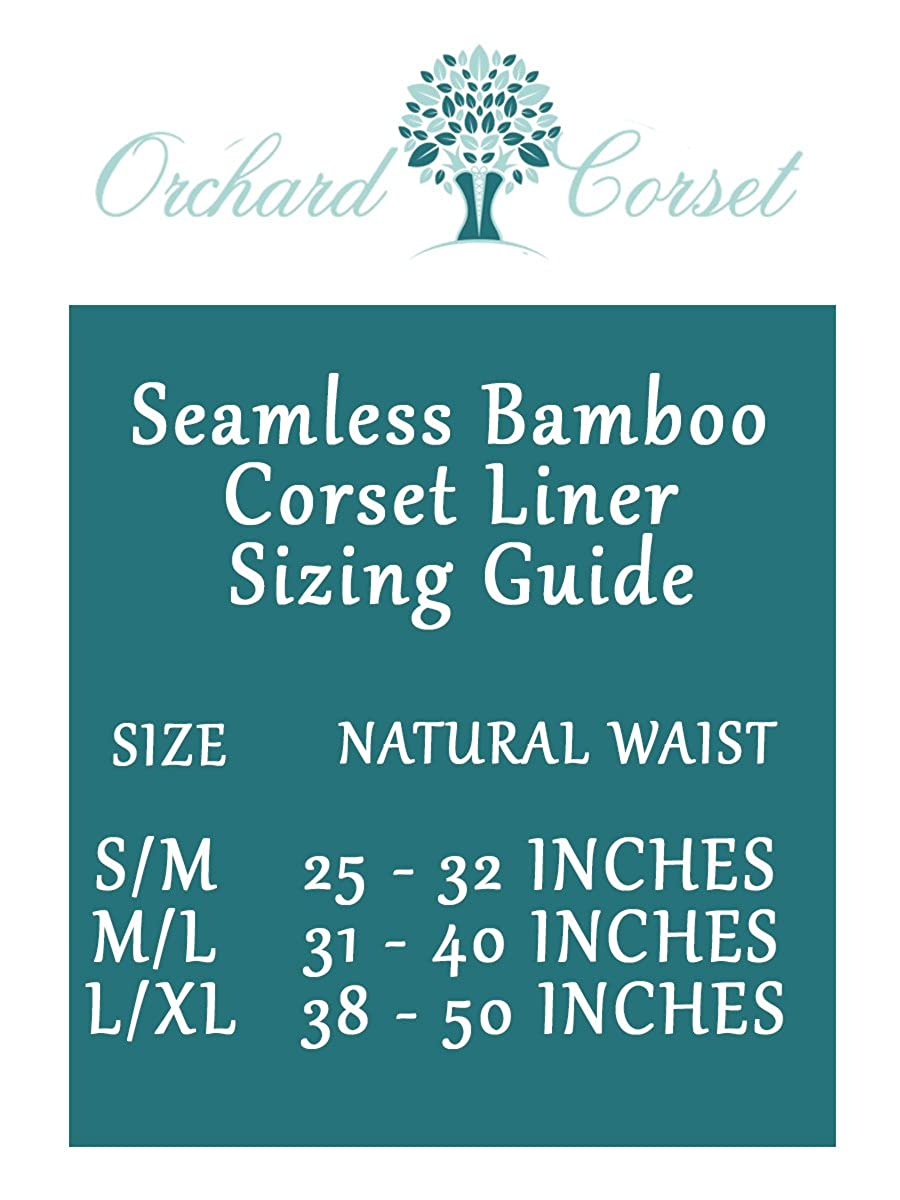 1685998579 Orchard Corset Seamless Bamboo Corset Liner Three Pack at Amazon Women s  Clothing store