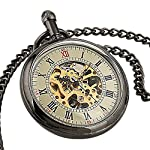 Carrie Hughes Men's Open face Bronze Steampunk Gold Skeleton Mechanical Pocket Watch with Chain Best Gift 12