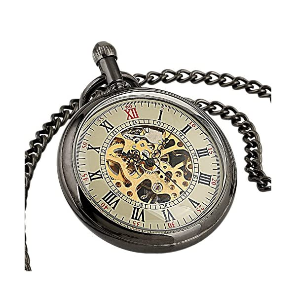 Carrie Hughes Men's Open face Bronze Steampunk Gold Skeleton Mechanical Pocket Watch with Chain Best Gift 6