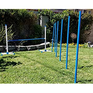 Triple A Dogs Combo 1 Dog Agility Jump/6 Dog Agility Weave Poles Buy Combo and Save, Dog Training, Dog Jumps, Dog Hurdles, Agility Equipment, 31