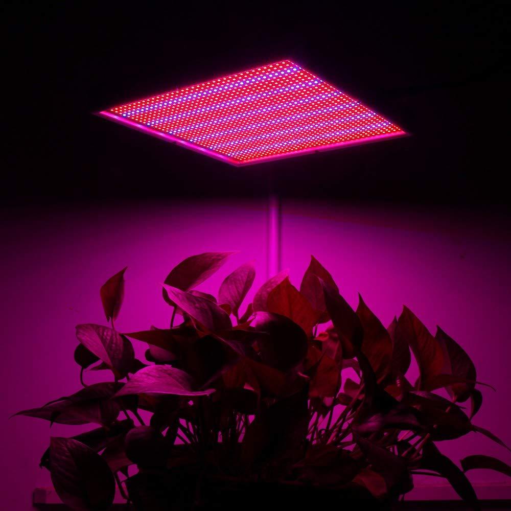 VOVOVO 120W LED Planta de luz 1365 LED Rojo y Azul Plantas de Interior Plantas de Bulbo Crecimiento luz de la l/ámpara l/ámpara Colgante para Las Plantas de Interior Flores y Verduras