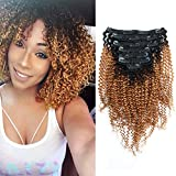 Sassina Ombre Kinky Curly Clip In Human Hair Extensions 8A Double Wefts For African American Black Women Natural Black...