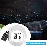 2019 Upgraded Car use 12W Twinkle RGBW LED Fiber