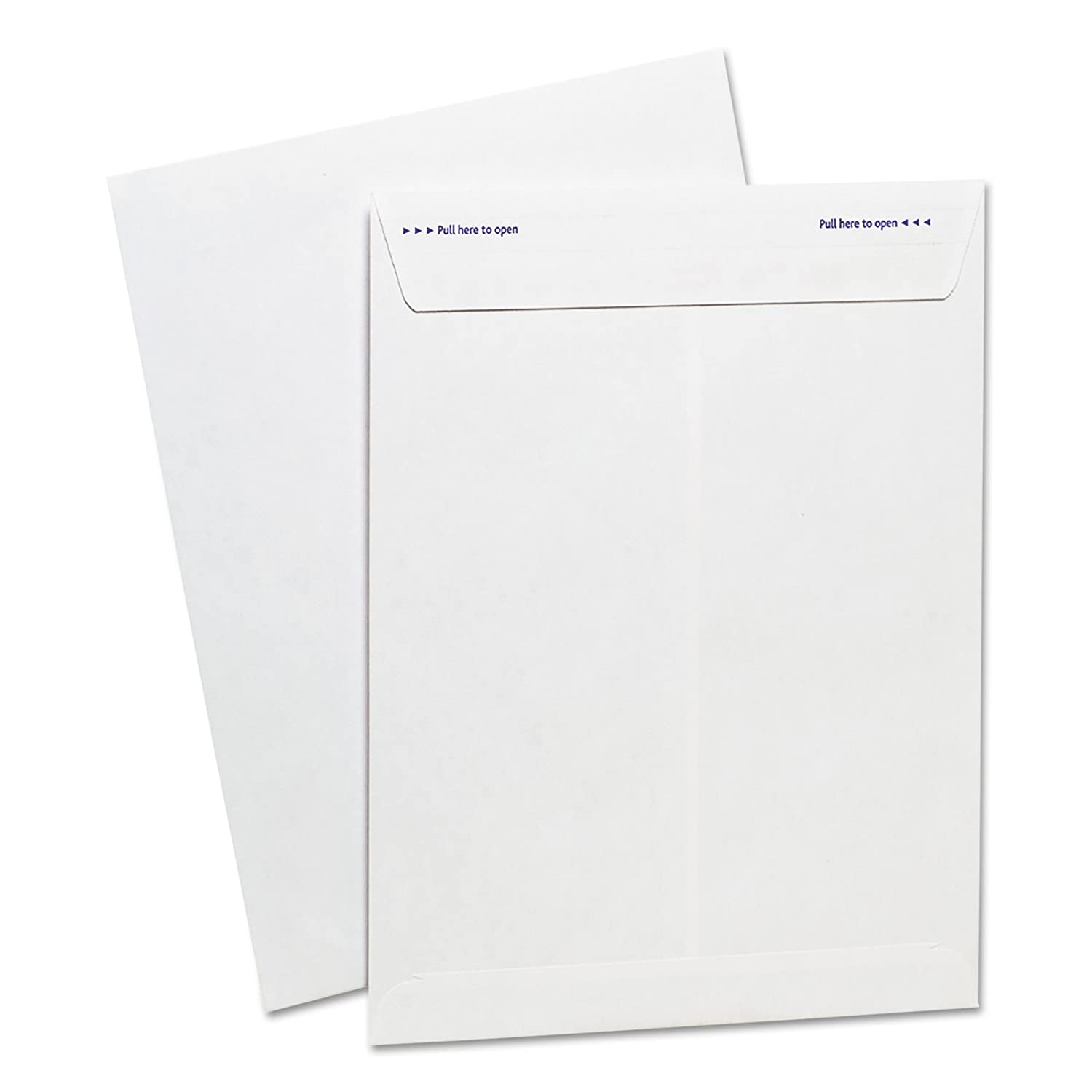 Peel /& Seal Adhesive Ampad Fastrip Security Catalog Envelope 73127 Tear-Away Quick-Open Strip Security Tint 100 Per Box White 9 Inch x 12 Inch