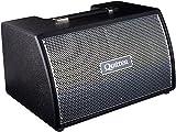 quilter amplifier - Quilter Labs Frontliner 2x8w 2x8 Modular Speaker Cabinet